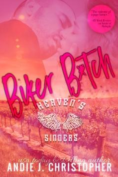 BikerB_tch500x750
